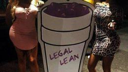 leanpic